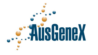 AusGeneX - Foetal bovine serum, newborn calf serum, purified proteins, bovine serum albumin, antibodies and other bovine and non bovine serum products.